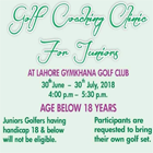 Golf Coaching Clinic for Juniors